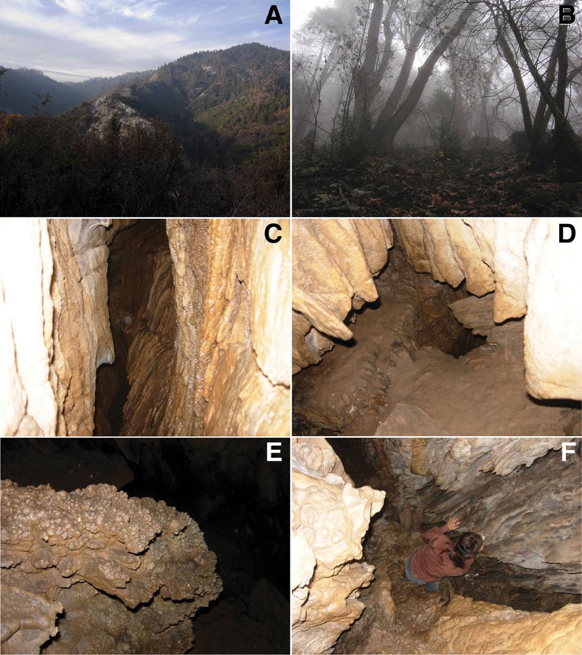 Jeskyně, kde byl nalezen nový druh mnohonožky