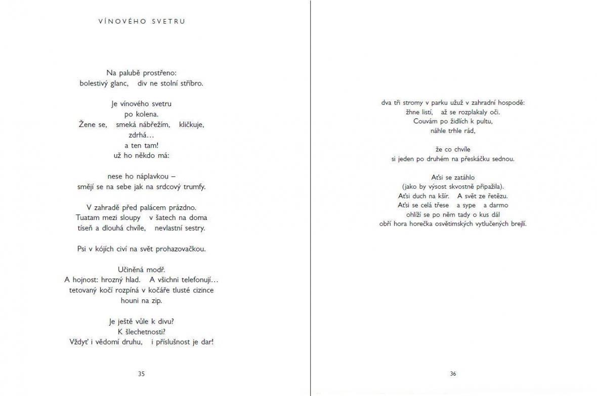 Ukázka ze sbírky Karla Šiktance Horniny