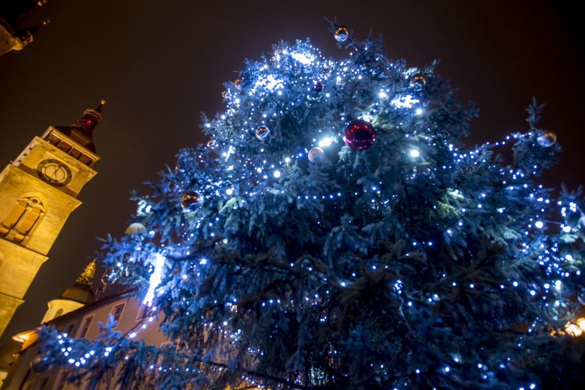 Vánoční strom v Hradci králové