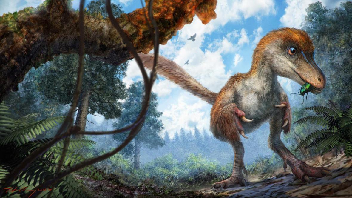 Coelosaurus