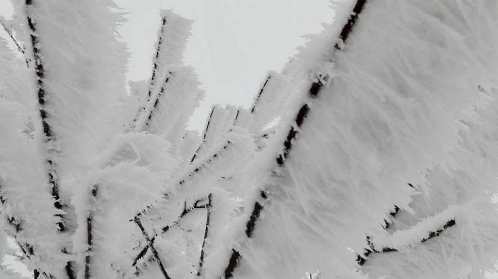 Silná námraza v Mrakotíně na Jihlavsku