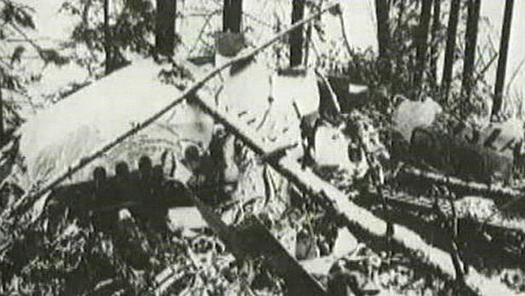 Trosky zříceného letadla u Srbské Kamenice