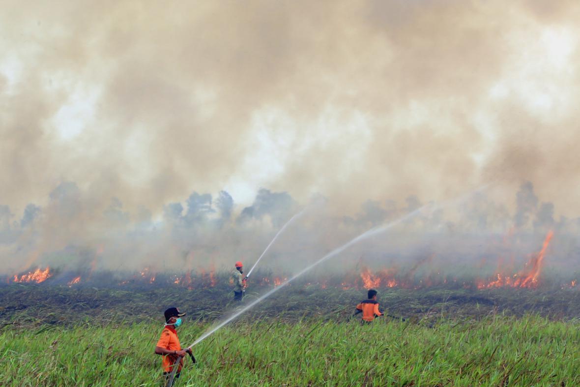 Indonésii zasáhla v roce 2005 masivní vlna požárů. Většinu z nich založili lidé