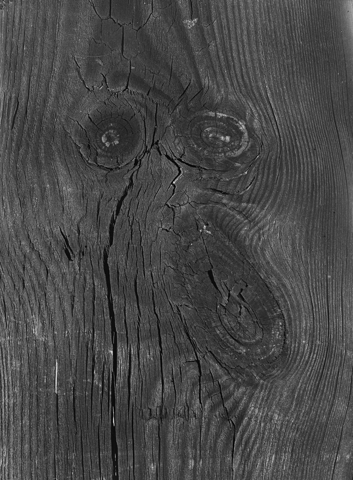 Karel Kuklík / Autoportrét, 1962