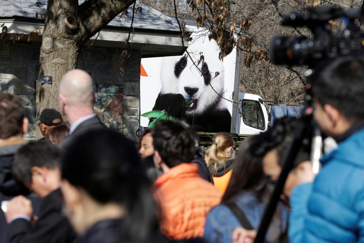 Odjezd pandy sledovala ve Washingtonu řada novinářů