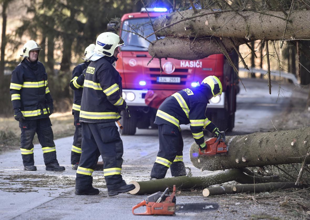 U Vyskytné nad Jihlavou zatarasily popadané stromy silnici na několika místech