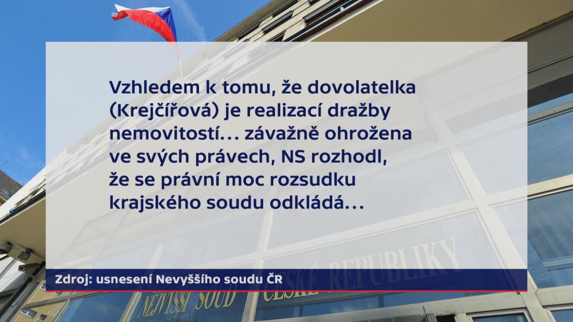 Usnesení Nejvyššího soudu ČR