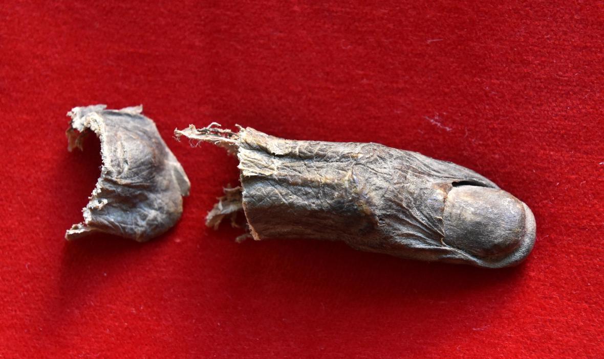 Díky výbornému stavu ostatku se podařilo získat otisk palce