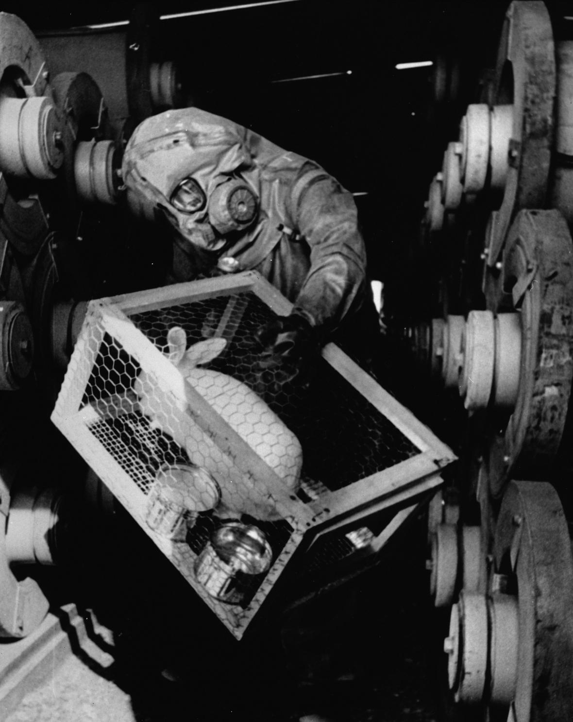 Klec s pokusným králíkem pro testy sarinu