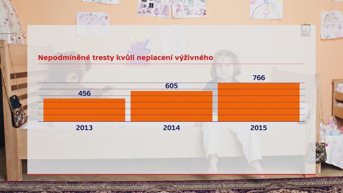 Graf: Nepodmíněné tresty kvůli neplacení výživného
