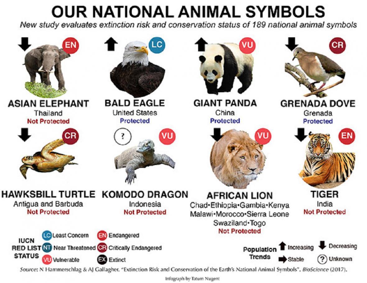 Ohrožená zvířata