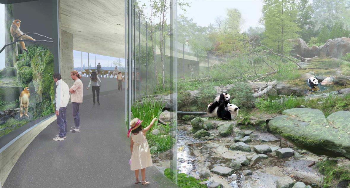 Vizualizace pandí expozice