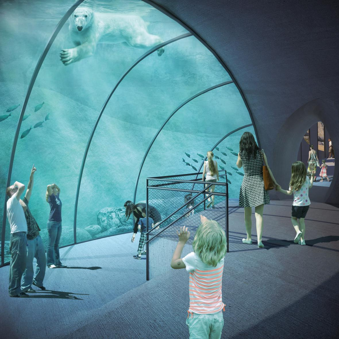 Budoucí expozice ledních medvědů