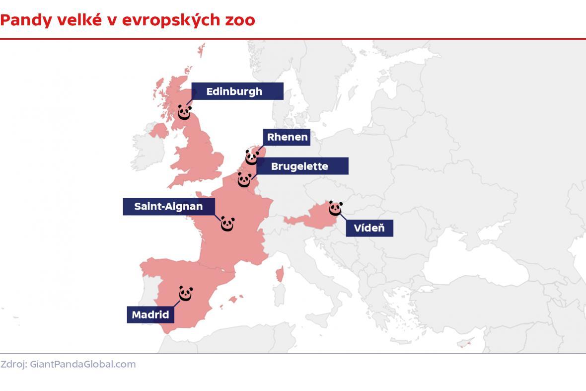 Pandy velké v evropských zoo