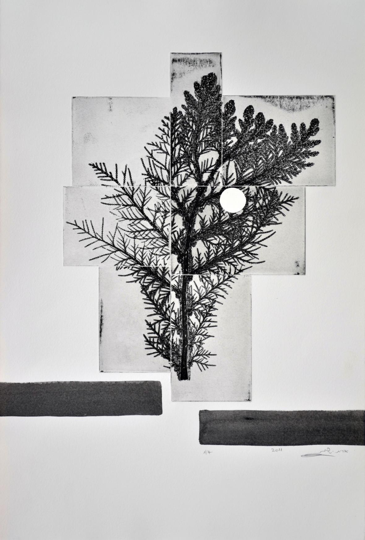 Vlivy měsíčního kontinua, lept, měkký vosk a ruční tisk, 2011