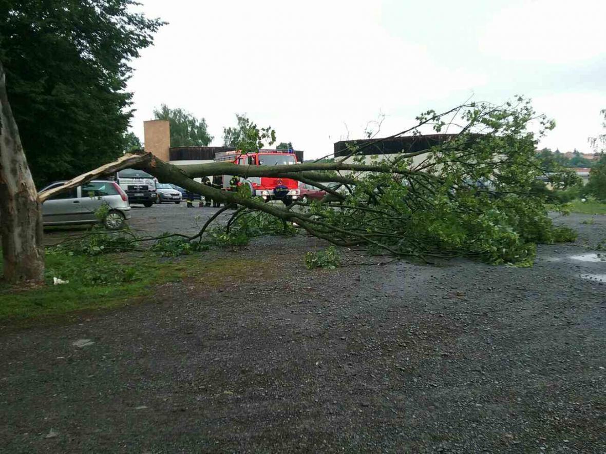 Hasiči v Jihomoravském kraji měli po bouři nejvíc práce s odstraňováním popadaných stromů a větví