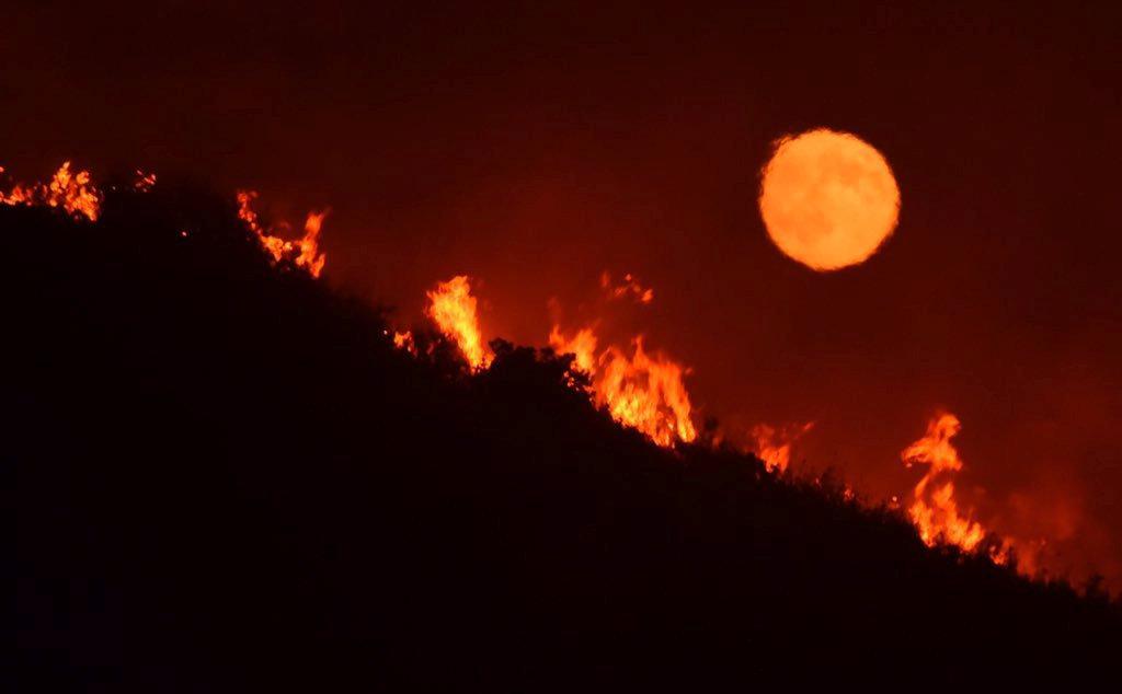Lesní požár v Kalifornii