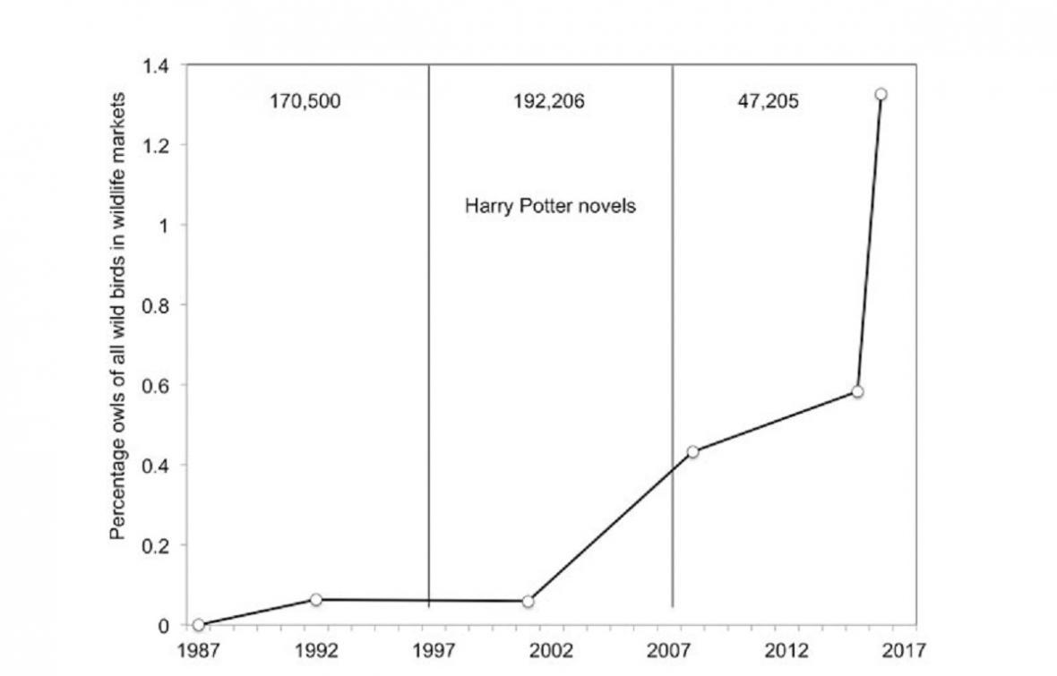 Korelace mezi popularitou Harryho Pottera a počtem prodávaných sov