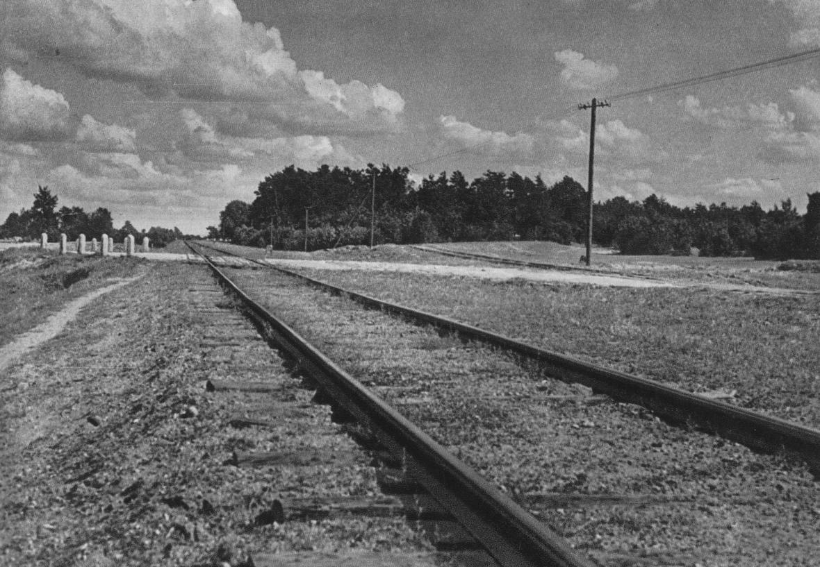 Kolejnice, která spojovala železniční stanici v Treblince s táborem smrti