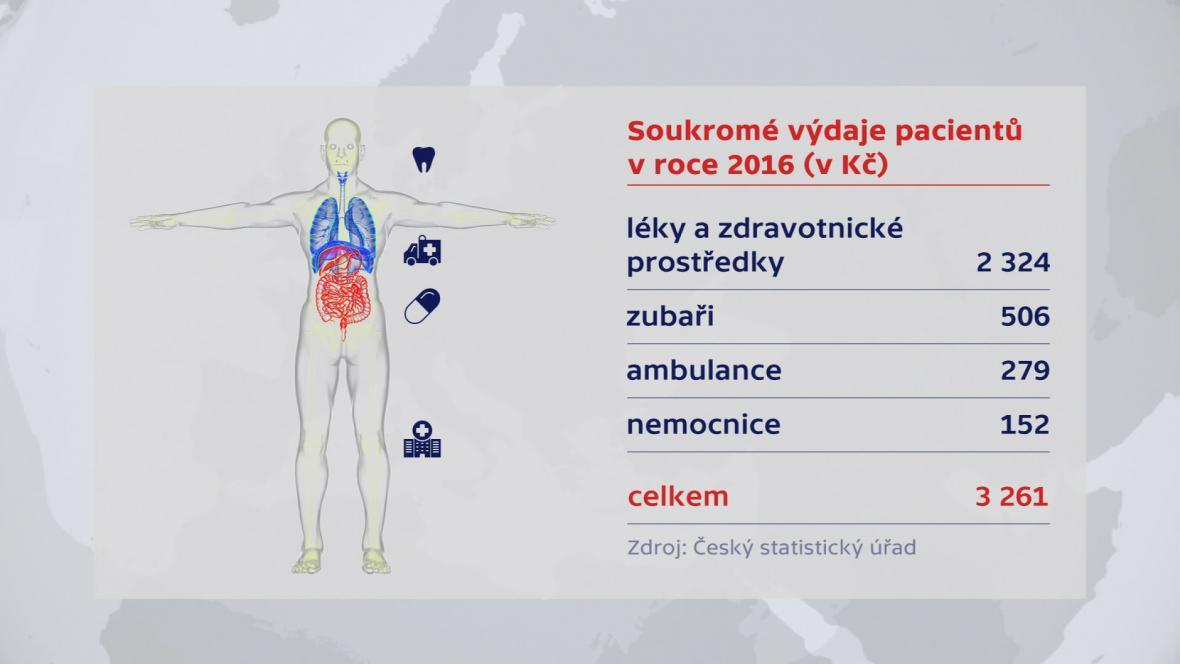 Výdaje českých pacientů v loňském roce