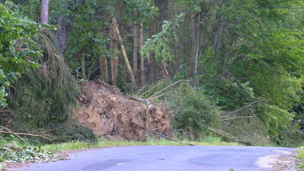 V Jaroměři mluví o historicky největších škodách na lesním majetku
