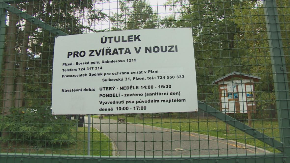 Plzeňský útulek na Borských polích