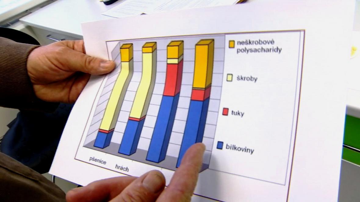 Výzkum královéhradeckých vědců zaměřený na potravinové doplňky z lupiny