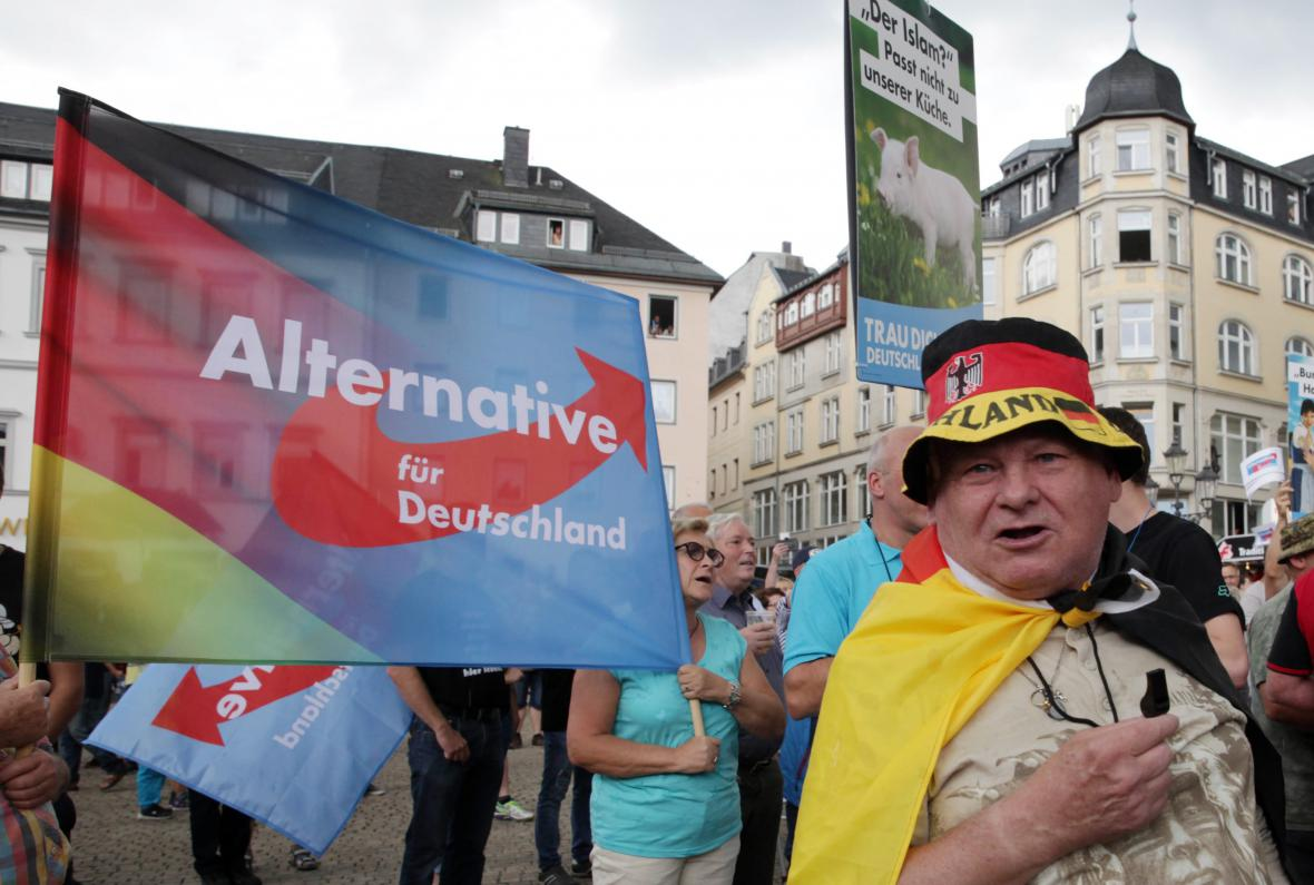 Protest AfD