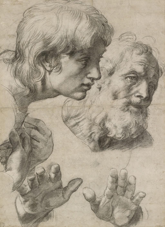 Raffael / Studie hlavy a ruky, 1519-20