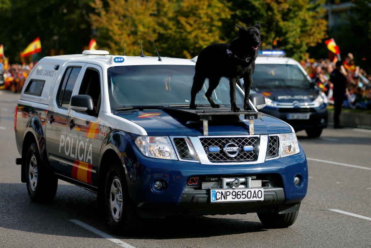 Na kapotě jednoho z policejních vozů se projel pes
