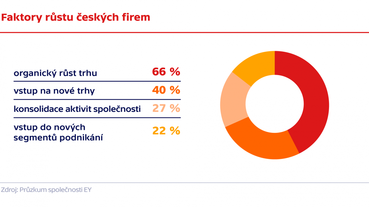 Faktory růstu českých firem