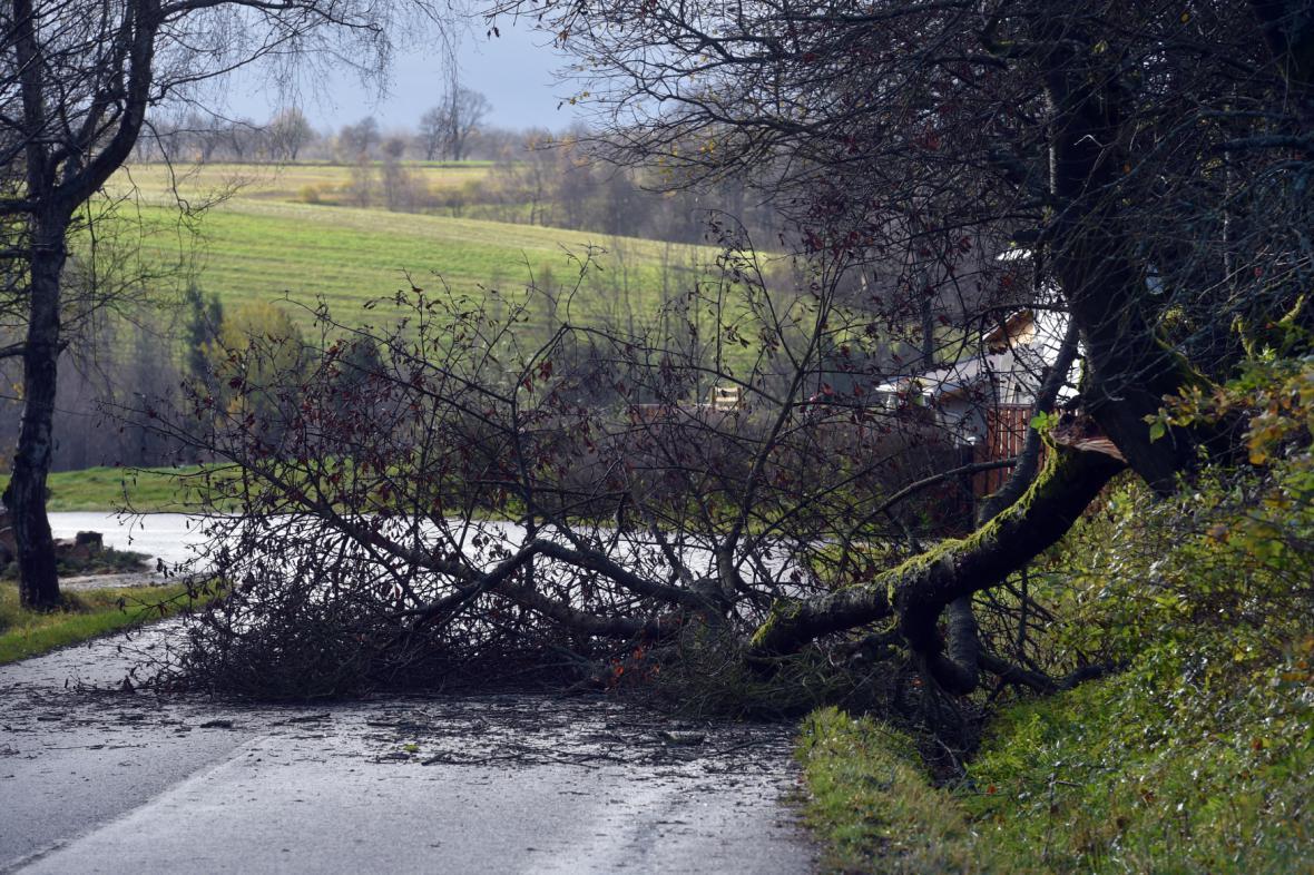 Spadlý strom přes silnici poblíž obce Krajková na Sokolovsku.