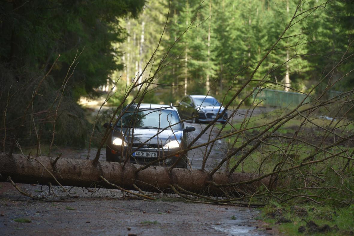 Strom padlý přes silnici