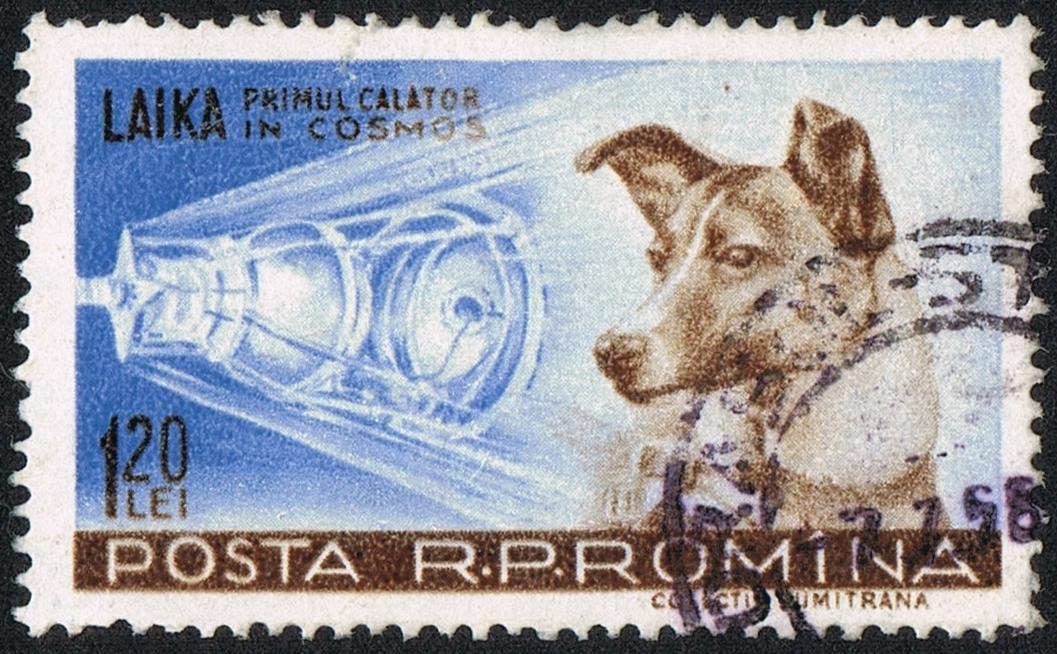 Rumunská známka s Lajkou