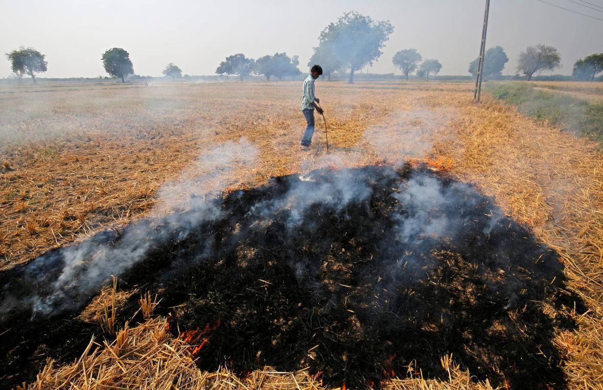 Pálení zbytků zemědělských plodin