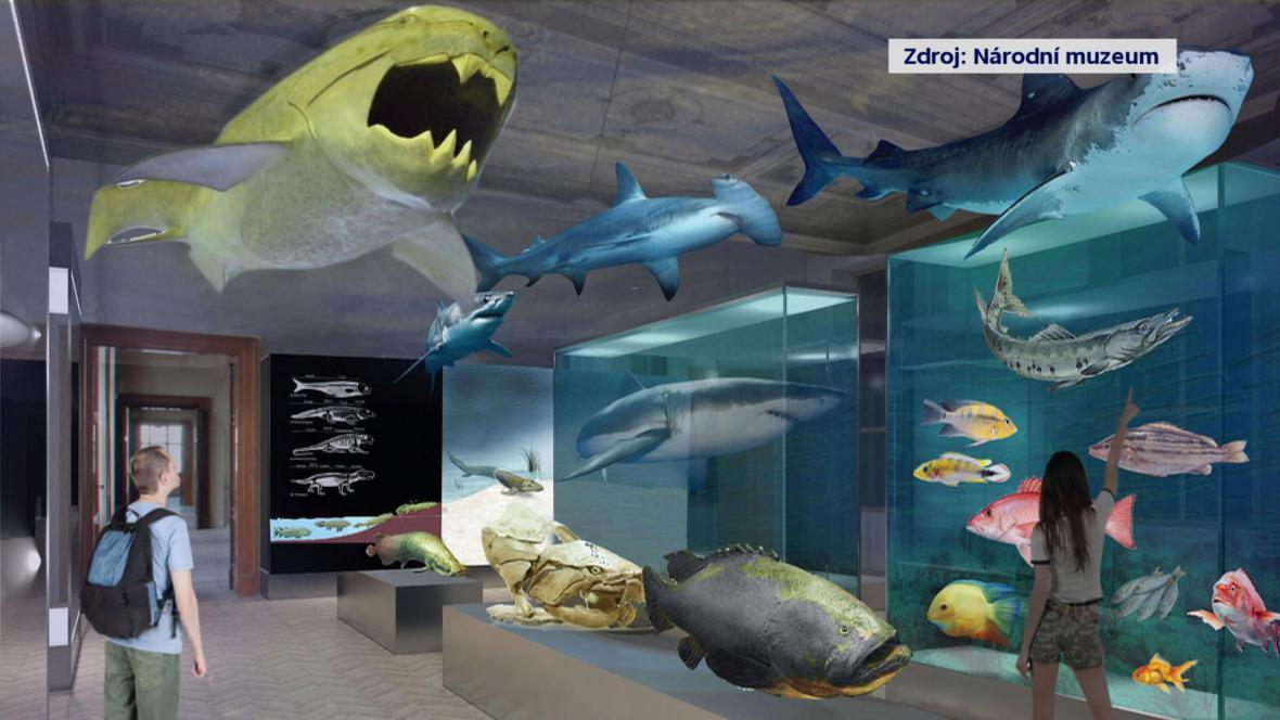Vizualizace nové přírodovědné expozice Národního muzea