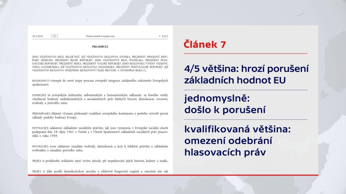 Článek 7