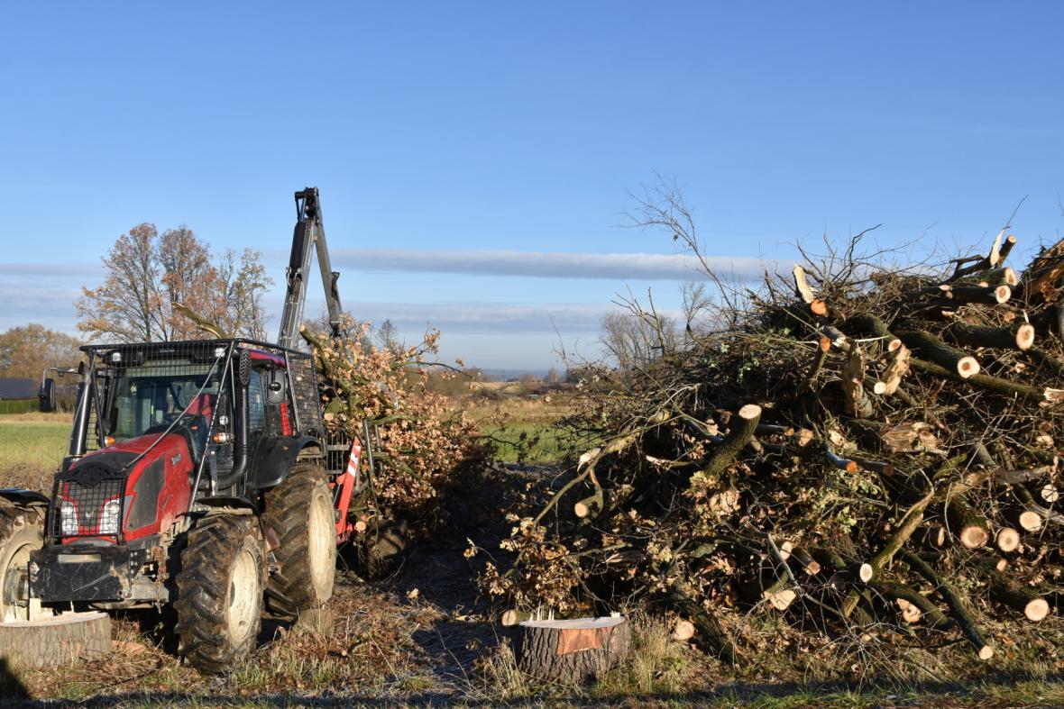 Na budoucím úseku dálnice D3 mezi obcemi Úsilné a Dobrá Voda u Českých Budějovic začala kácením stromů příprava staveniště