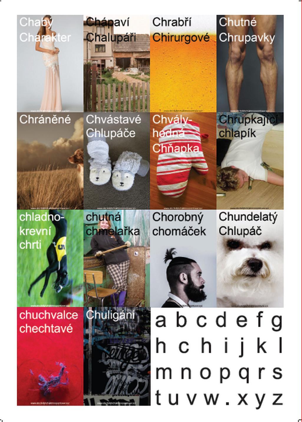 Z výstavy CzechImage