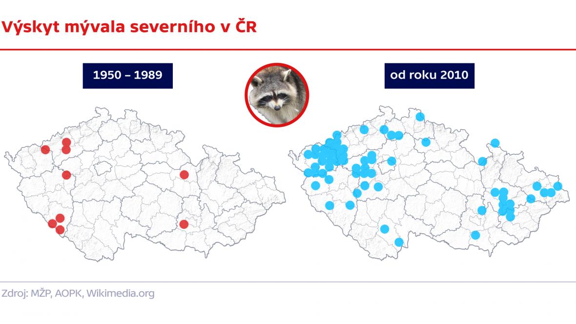 Výskyt mývala severního v ČR
