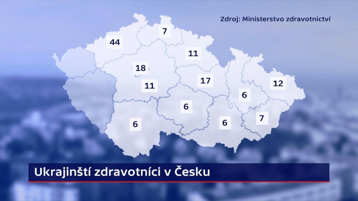 Ukrajinští zdravotníci v Česku