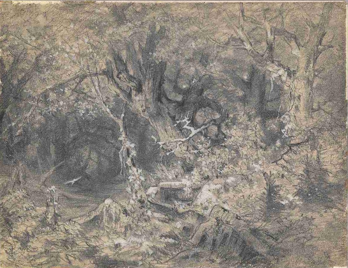 Julius Mařák, Vnitřek lesa se starými duby a letícím ptákem, nedatováno (70. léta 19. století).
