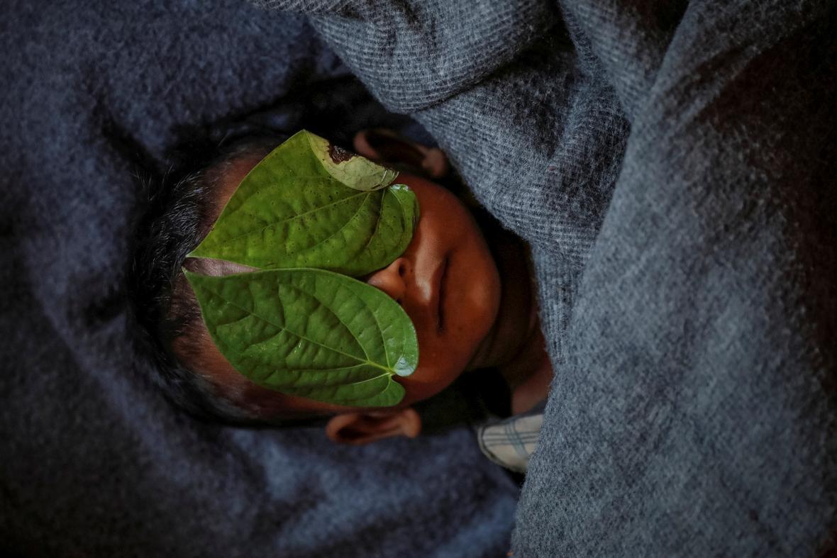 Ágentura Reuters obdržela za snímky dokumentujících utrpení Rohingů Pulitzerovu cenu
