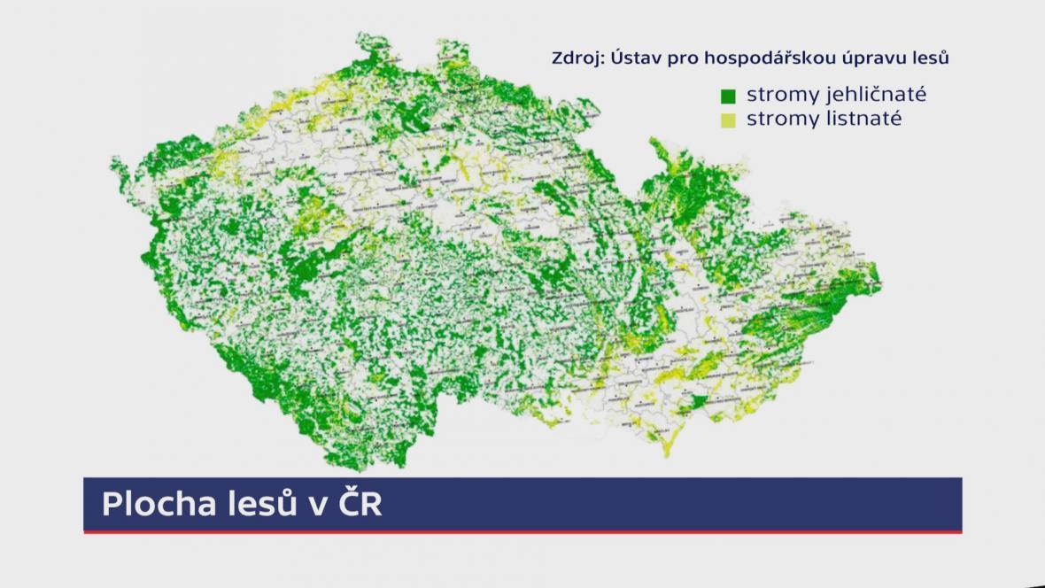 Plocha lesů v ČR
