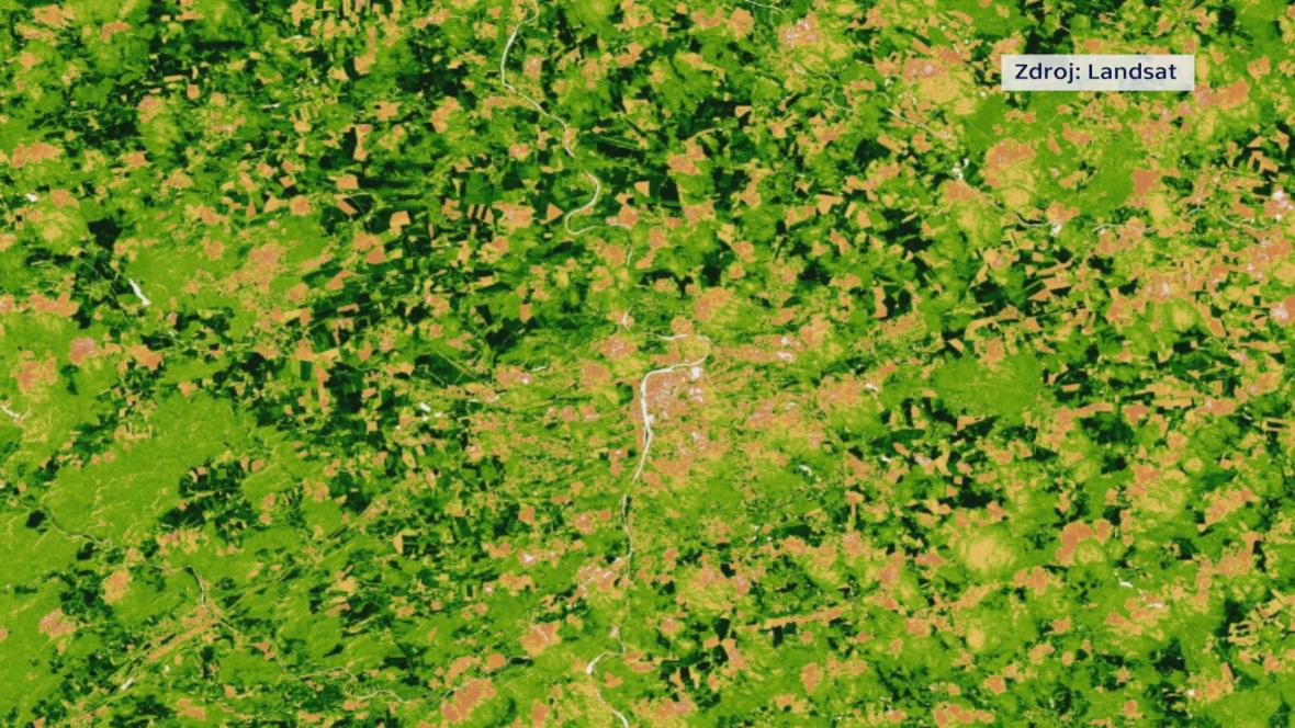 Satelitní snímek lesa
