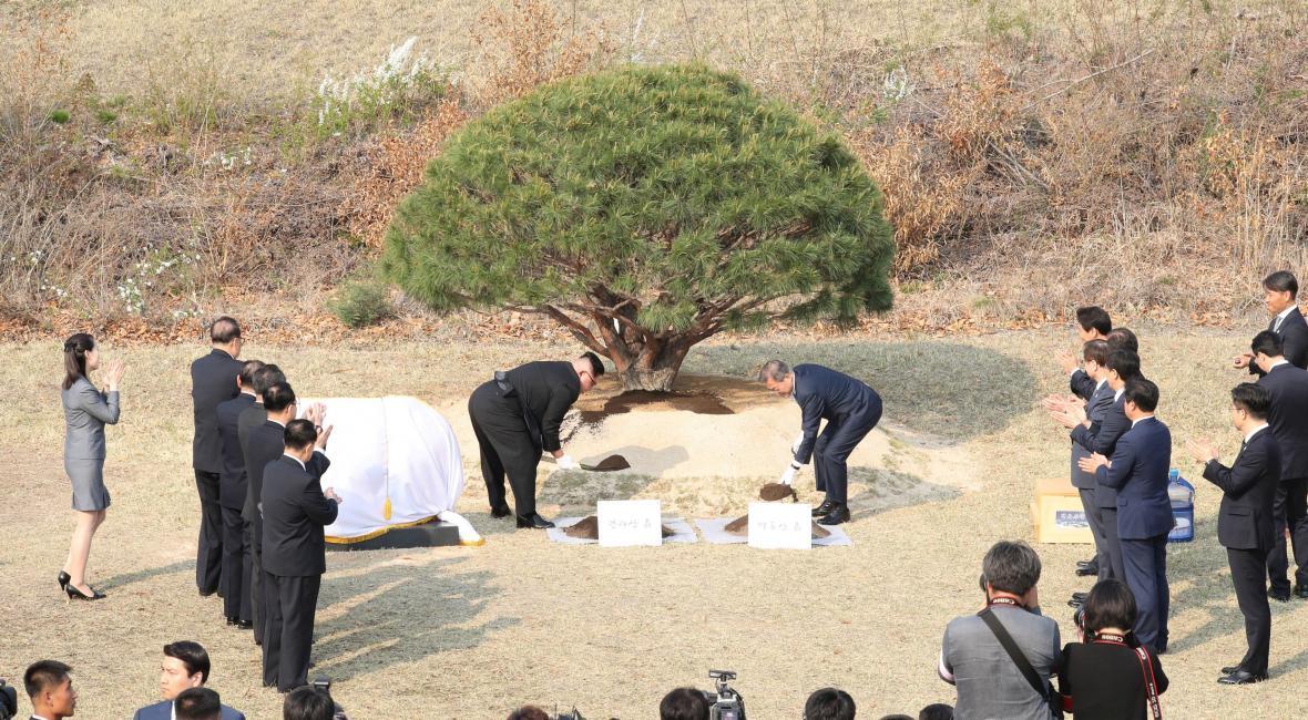 Kim a Mun společně zasadili strom v demilitarizovaném pásmu