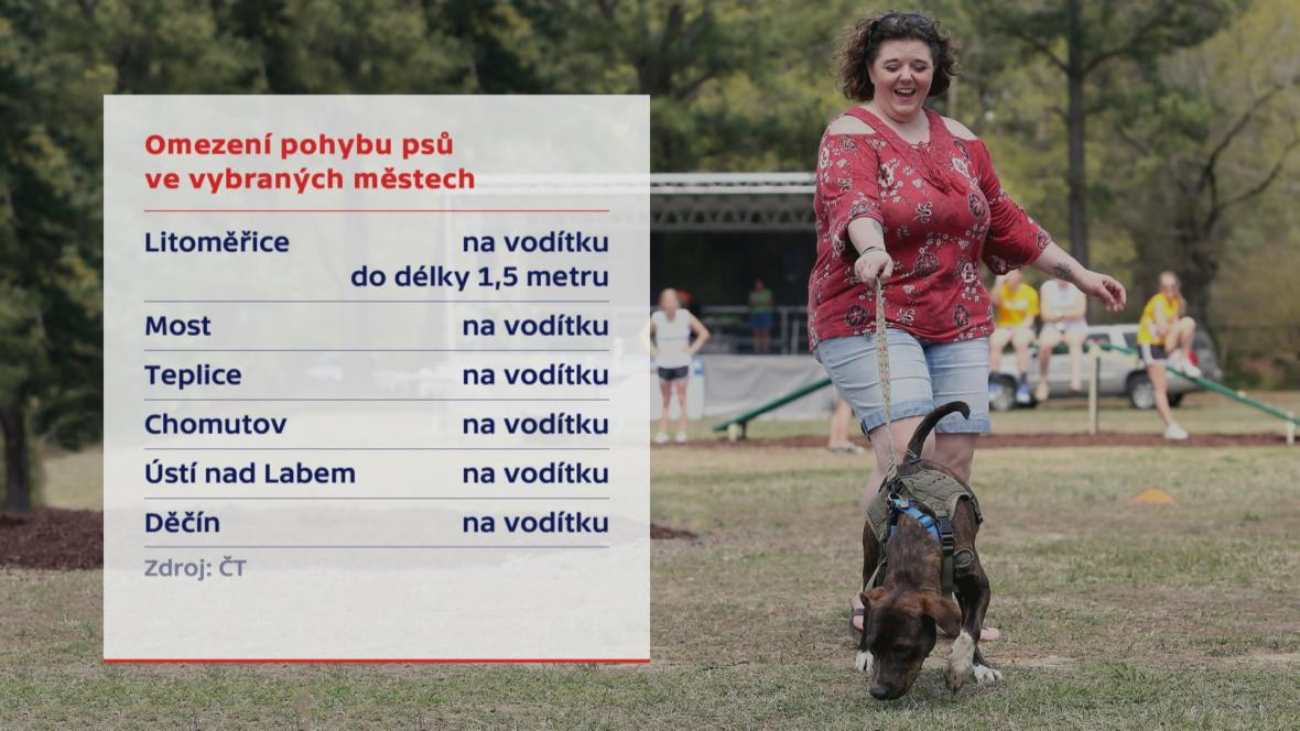 Omezení pohybu psů ve vybraných městech