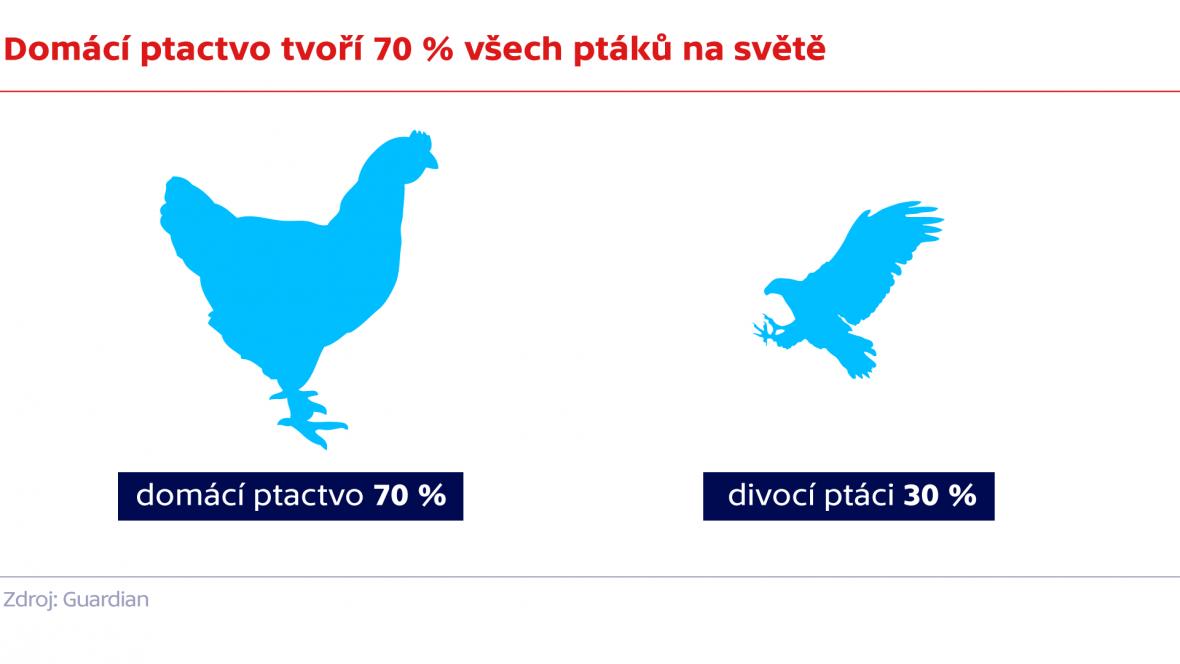 Domácí ptactvo tvoří 70 % všech ptáků na světě