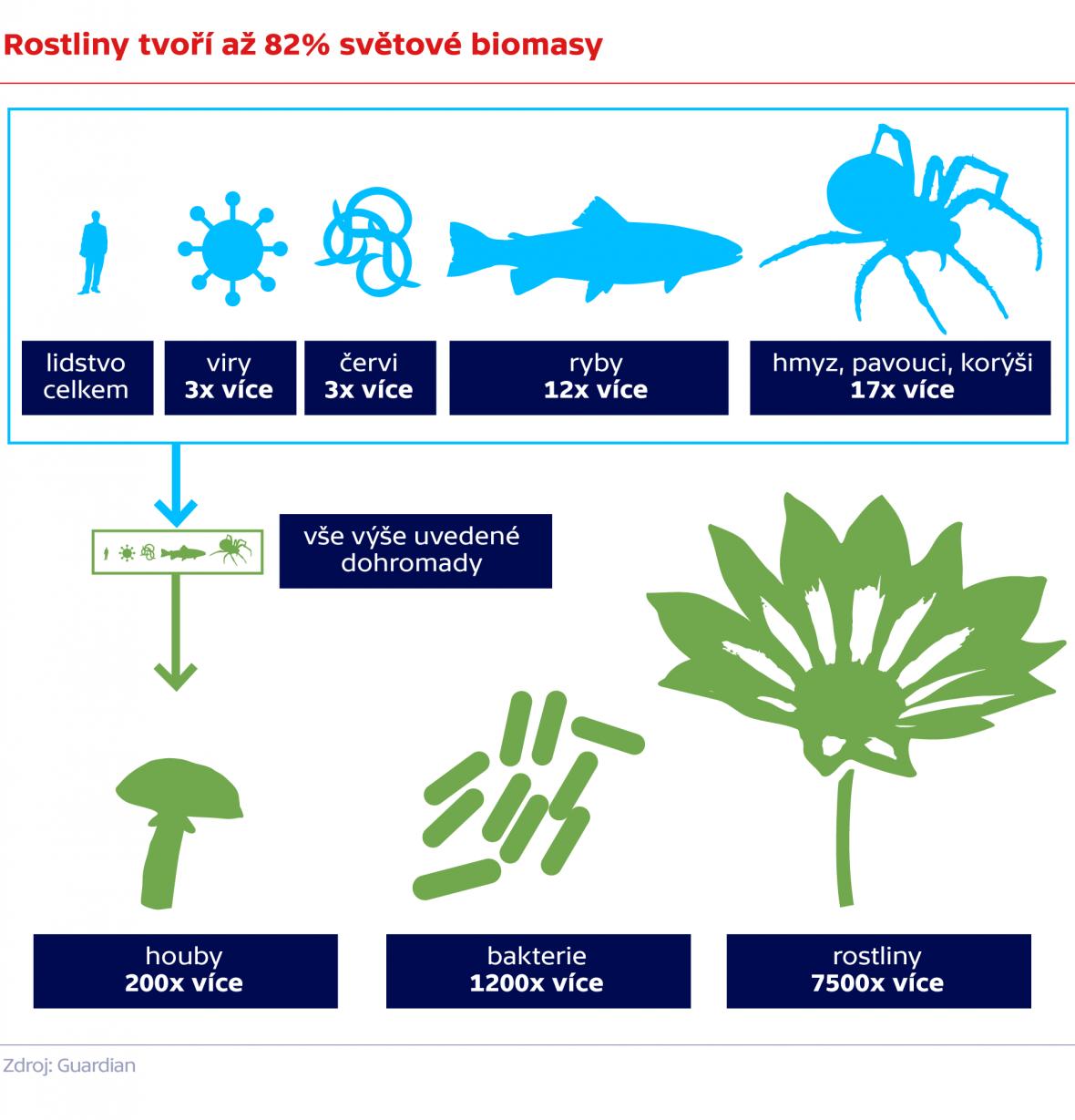 Rostliny tvoří až 82% světové biomasy