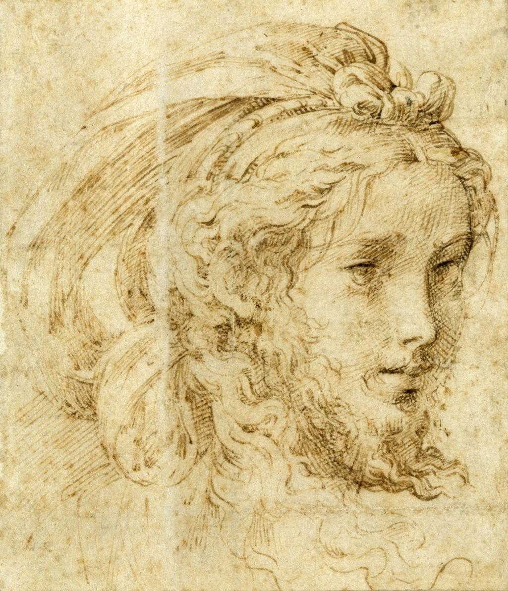 Parmigianino / Portrét mladého muže s vousem